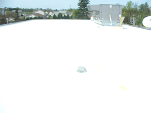 White coating on a commercial roof