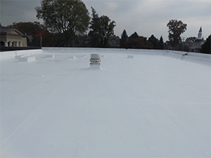 Flat roof with a fluid applied membrane and coating applied