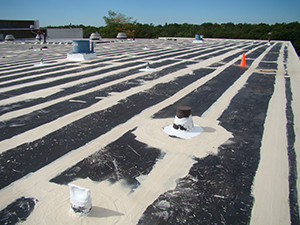 roof coating project